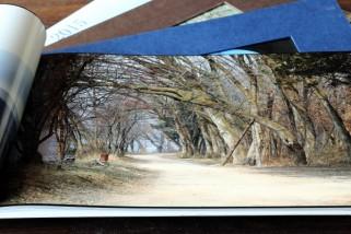 Fotobuch gestalten