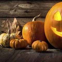 Halloween Party: Inspirationen & Ideen für ein schaurig-schönes Fest