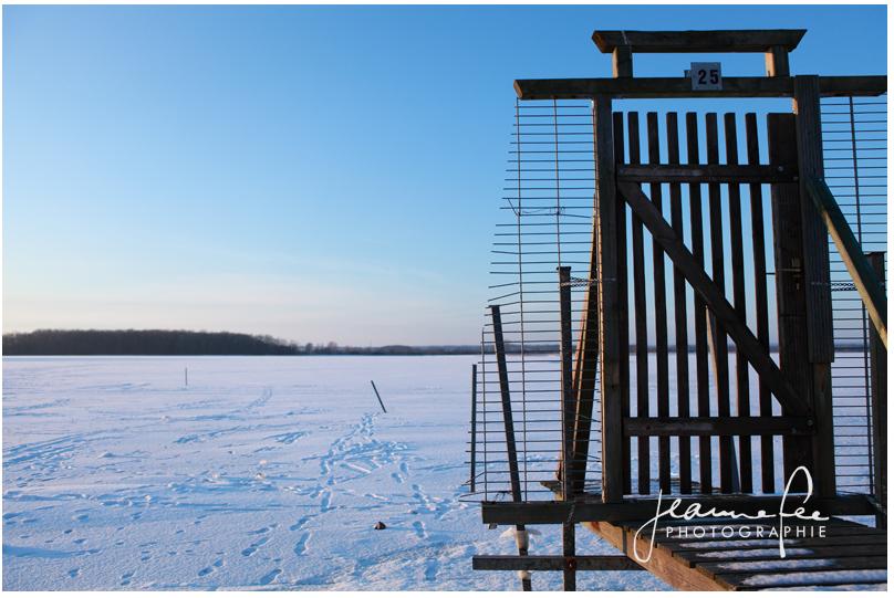 Winterlandschaft im Januar