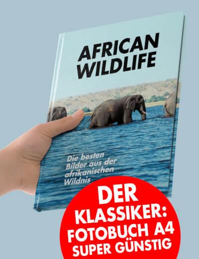 Fotobuch A4 online drucken