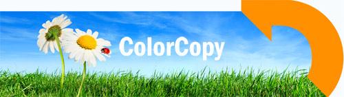 Digitaldruckpapier matt ColorCopy