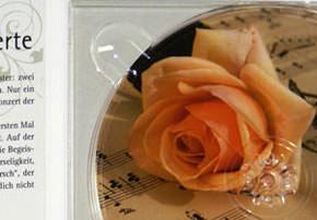 cd cover booklet digipack extrem g nstig drucken. Black Bedroom Furniture Sets. Home Design Ideas