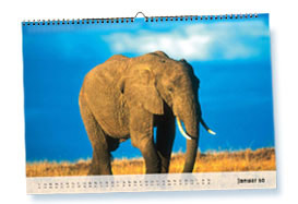 Kalender 2010 mit Ferienterminen der Bundesländer