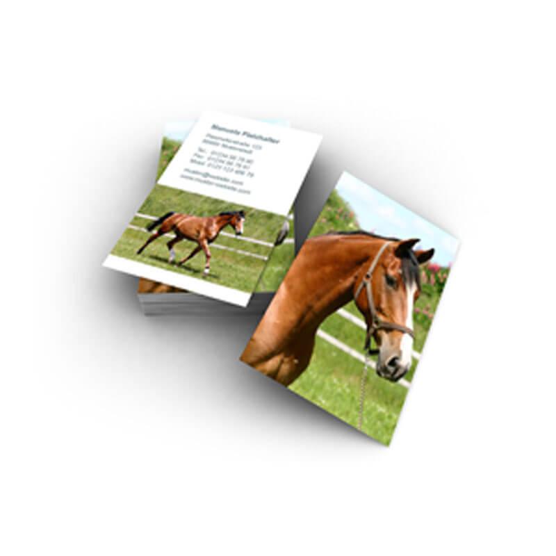 Visitenkarte Mit Pferd Für Tierfreunde Reinvereine Oder Ein